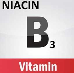 Qu'est-ce Que Fait NiacinMax ?