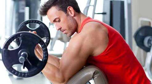 la leucine déclenche le signal des mTOR permettant la croissance musculaire anabolique