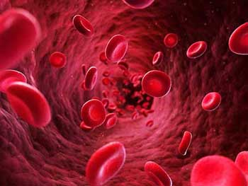 Pourquoi l'approvisionnement en sang est important